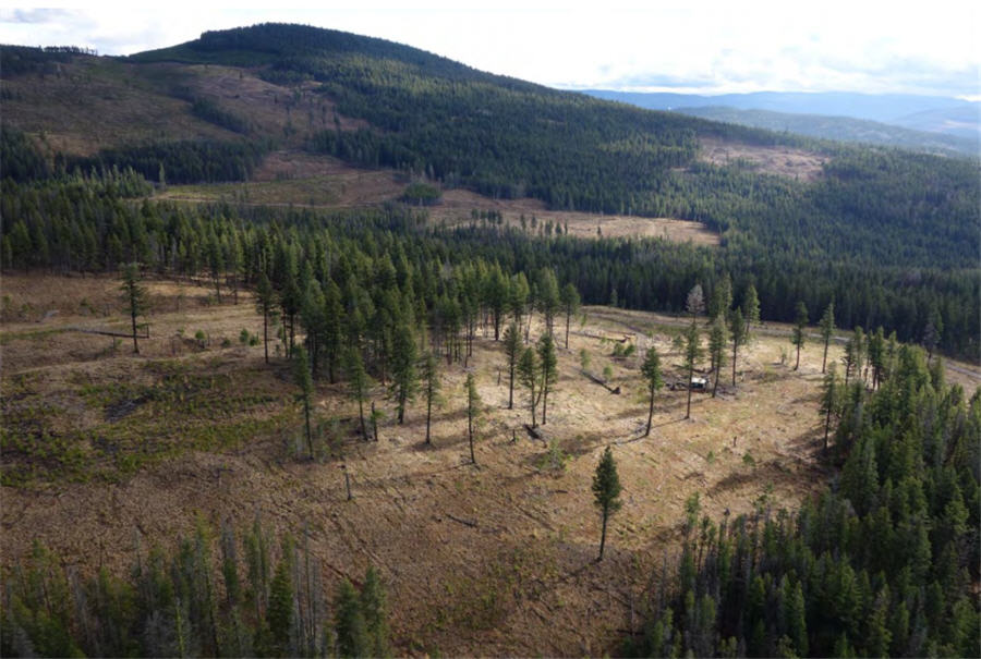 Westhaven says new gold zone at Shovelnose indicates 'large and robust' system