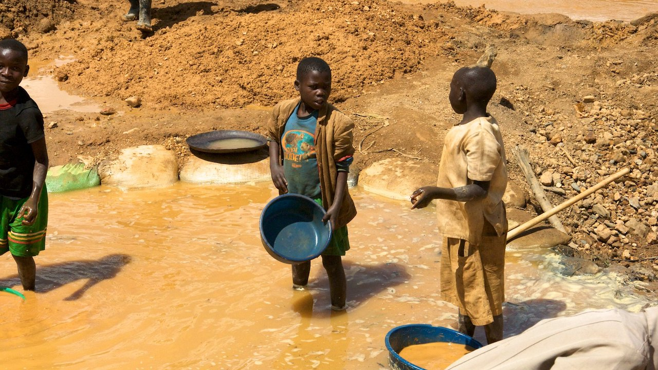 Number of companies ensuring they use conflict-free minerals drops
