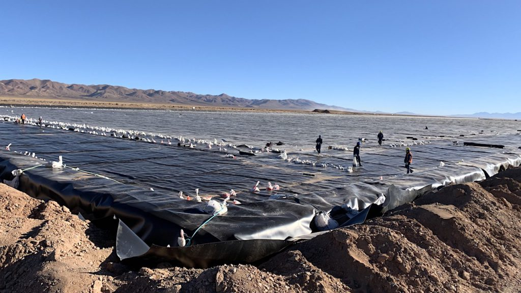 Lithium Americas, Ganfeng to build larger-scale mine in Argentina ...