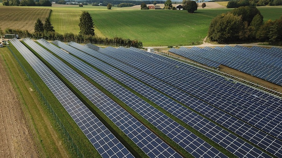 Australia's mining tycoon Andrew Forrest invests in giant solar farm