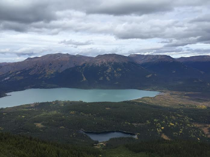 Newcrest buys land near Red Chris mine from Skeena