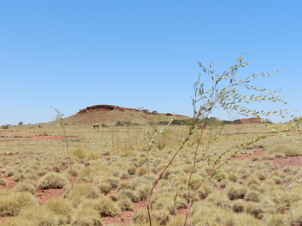Aboriginal group say Fortescue has applied to mine near destroyed caves
