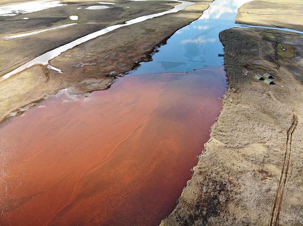 Nornickel fights cover-up accusations over Arctic oil spill
