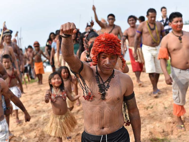 'Nobody has done anything': Amazon indigenous group decries illegal mining