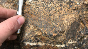 Scientists give new clues to find iron ore deposits