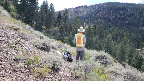 Gaia samples high grades at Freeman Creek gold project in Idaho