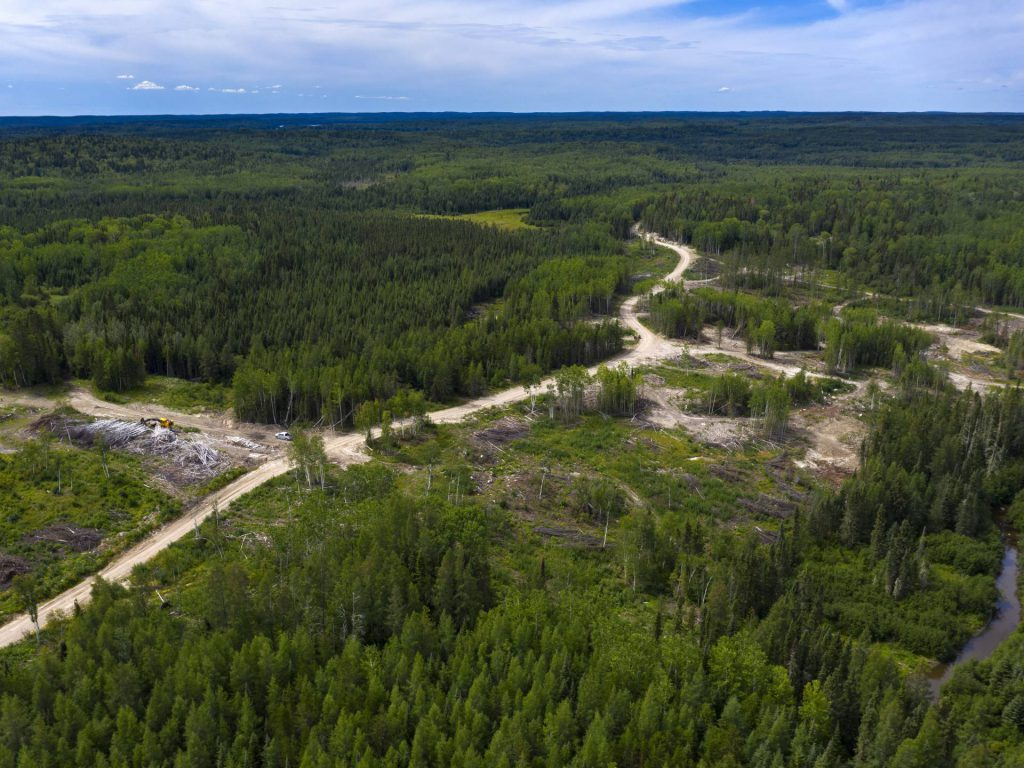 Trillium Gold acquires land package in Red Lake camp
