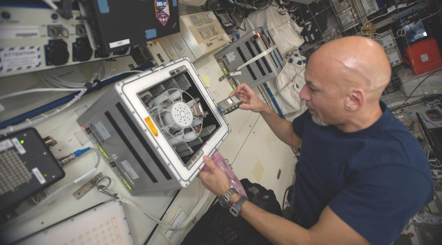 Rock-mining bacteria could support human presence in space