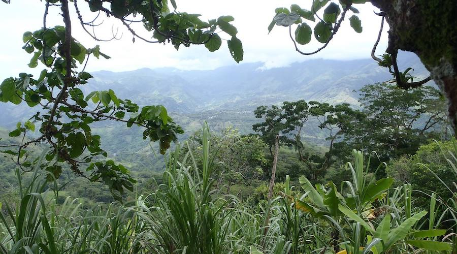 Max Resource expands landholdings in Colombia by 300%