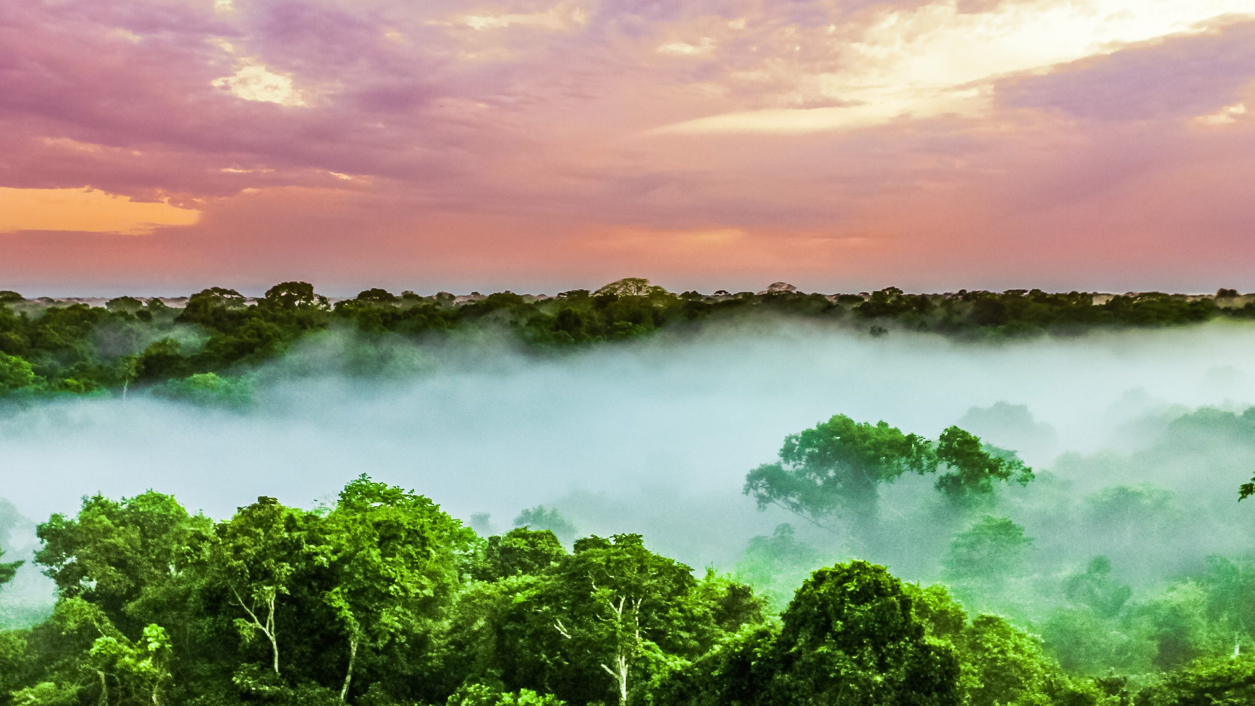 Mining the Amazon brings low return for local communities - report
