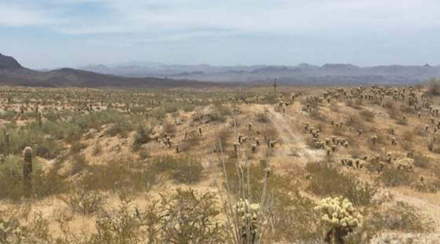 Western Rare Earths receives drill permit for La Paz project in Arizona