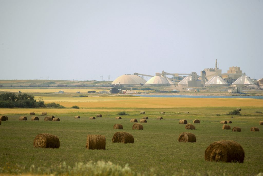 New Nutrien CEO to carry out current strategy, focus on potash price