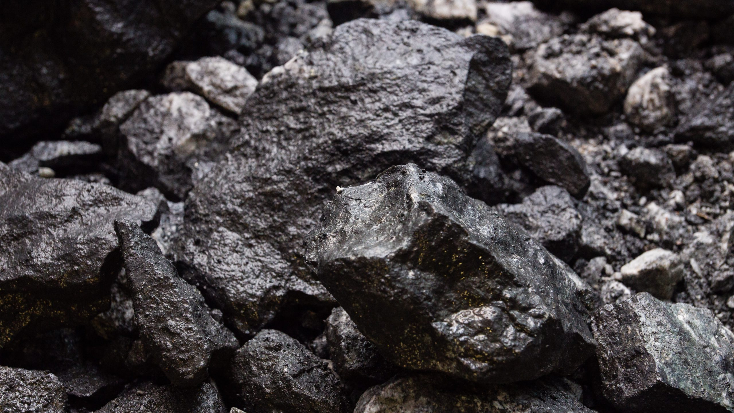Australia's New Hope on hunt for acquisitions beyond coal after bouncing back to profit