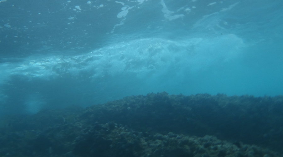 Sediment plumes from deep-sea mining become turbulent cloud