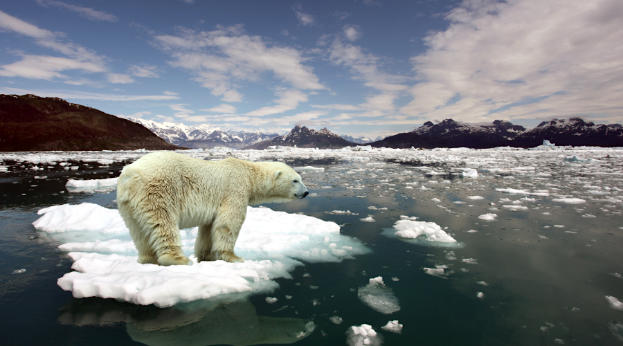 Climate scientists begin key report as G20 failed to reach phase-out coal deal