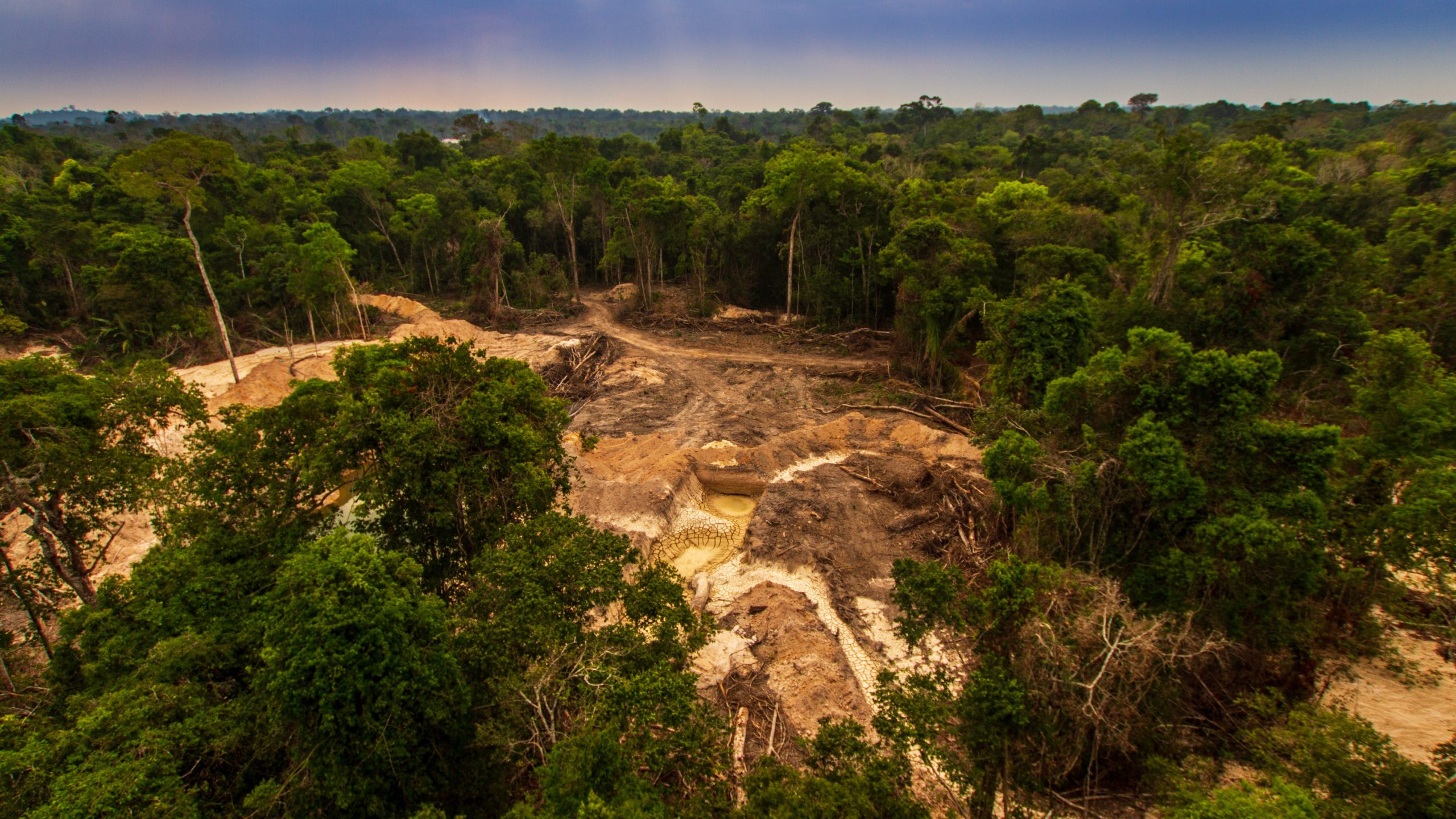 Illegal gold represents 17% of Brazil's exports - study